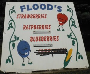 Flood's Farms, 46 Collver Road, Little Rapids