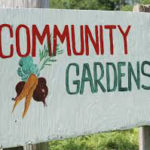 Community Garden - Volunteers Wanted