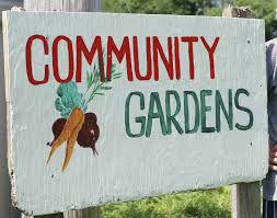 Community Garden - Volunteers Wanted